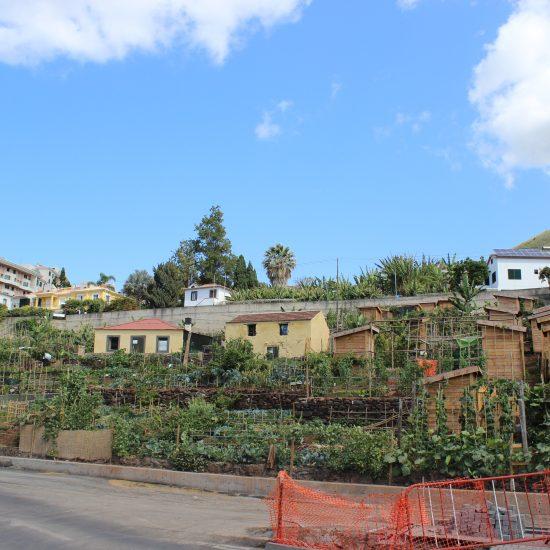 Hortas Urbanas da Ajuda